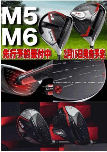 M5 M6.jpg